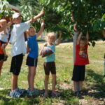 family and kids u-pick cherries near Traverse City in Northern Michigan