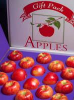Honeycrisp apple gift box