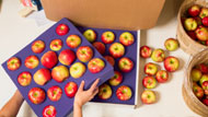 Michigan Apple Gift Boxes